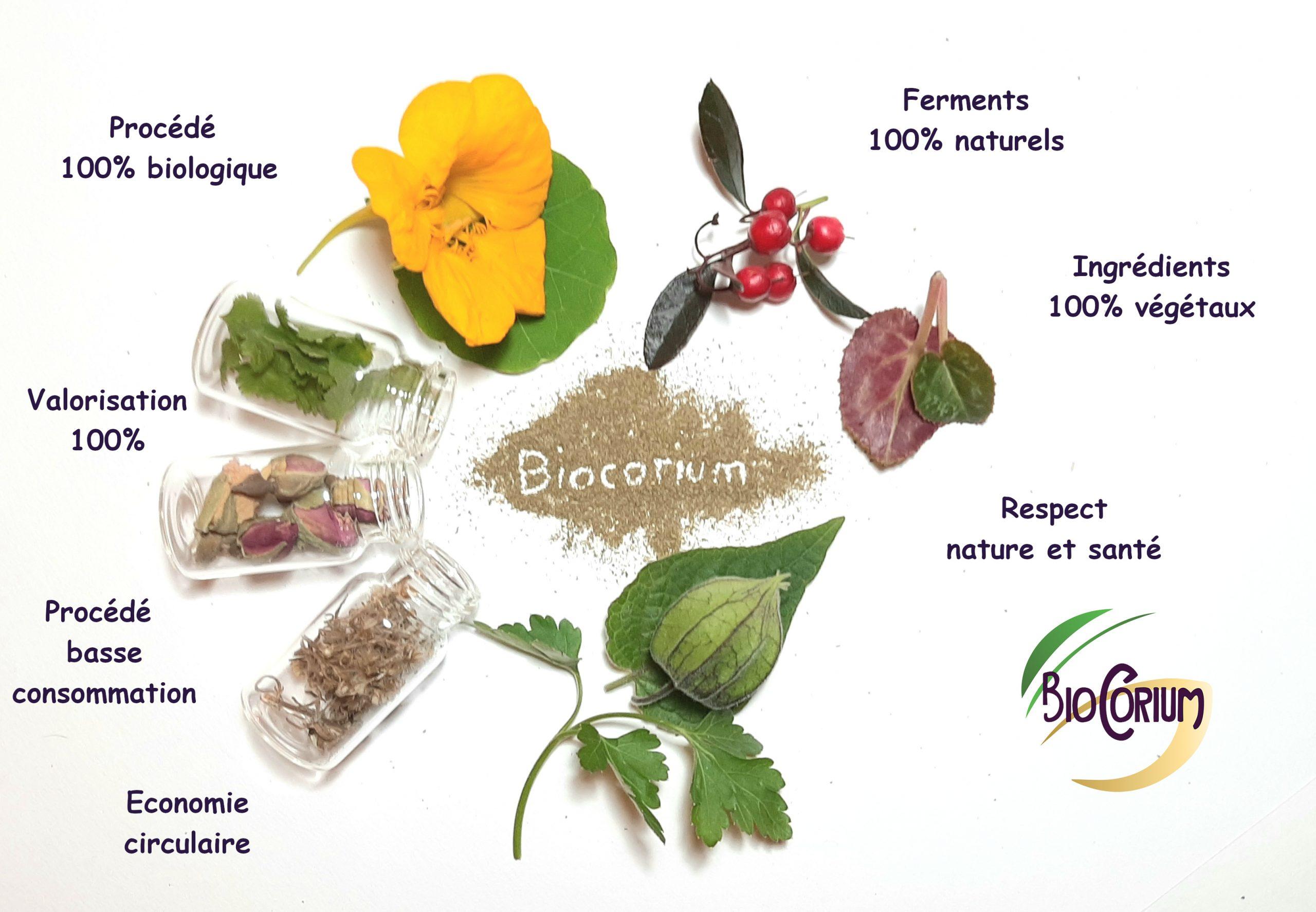 eco-responsabilite